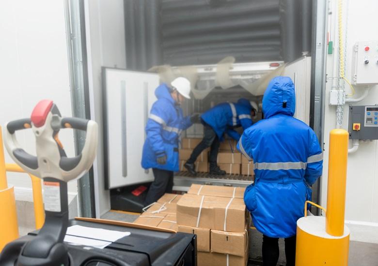 Cuidados para a logística de alimentos perecíveis – Portal IC