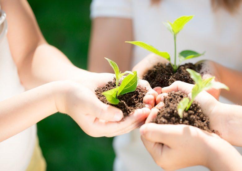 Empreendedorismo sustentável tudo sobre esse modelo de negócio - Portal IC