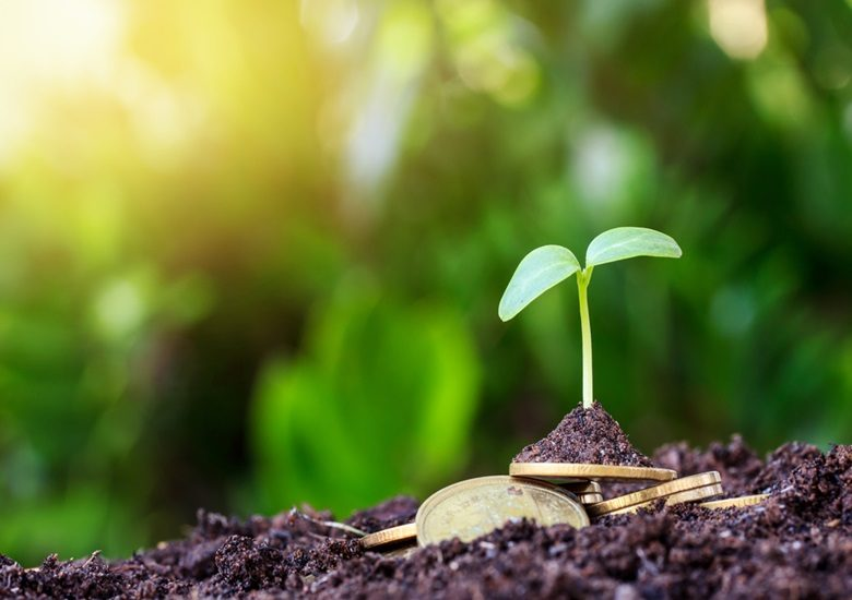 Saiba mais sobre a Licença Ambiental - Portal IC